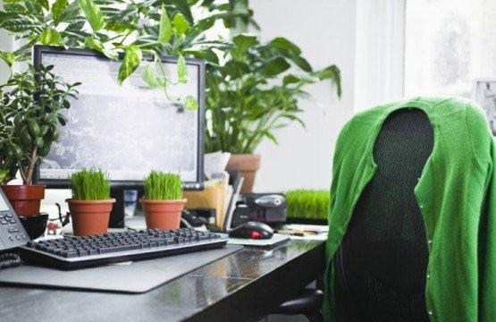 se mettre au vert au travail